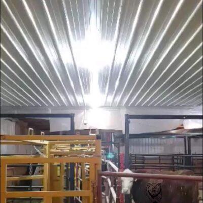 80W Wedge LED Corn Bulb