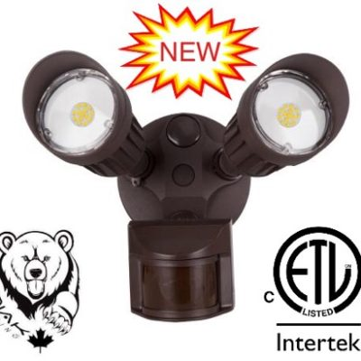 20W Outdoor Security Light
